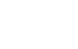 Rossin - white logo